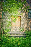 Wooden door Stock Photography