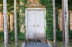 Wooden door in brick wallwith palm trees in front in Chiang Mai, Thailand. Travel concept. Ancient architecture. Lanna style Royalty Free Stock Photos