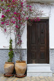 Wooden door decorated with beautiful pink flowers Stock Photography
