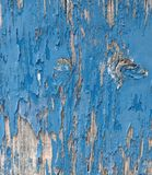 Wooden door detail Stock Images