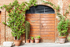 Wooden door and flowers in Tuscany, Italy Stock Photography