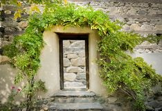 Wooden door frame covered with trees in front of stone wall. stock photo