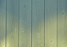 Wooden door with knots. Royalty Free Stock Photography