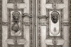 Wooden door with leon, St. Stephen's Basilica Stock Photos