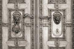 Wooden door with leon, St. Stephen's Basilica Stock Photos