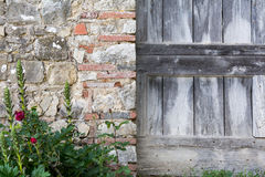 A wooden door next to a stone wall Royalty Free Stock Photo