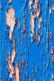 Wooden door, old blue paint royalty free stock image