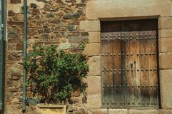 Wooden door on an old building facade with green shrub at Caceres. Wooden door with huge stone door frame on an old building facade with a green shrub at Caceres royalty free stock images