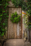 Wooden door in an old cottage in the forest Royalty Free Stock Image