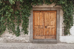 Wooden door. Overgrown with ivy Royalty Free Stock Images