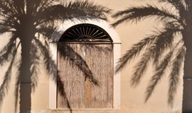 Wooden door and palm tree shadow Royalty Free Stock Image