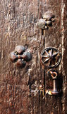 Wooden door with pilgrims scallops and knocker Stock Photos