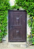 Wooden door in stone wall with ivy Stock Images