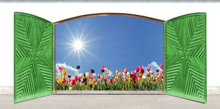 Wooden double door with carved pattern, view to tulip field Stock Image