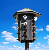 Wooden dovecote with pigeons Royalty Free Stock Photography