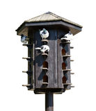 Wooden dovecote with pigeons Stock Photography