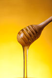 Wooden drizzler and flowing honey Stock Image