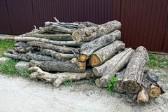 Wooden dry logs in the grass near the brown fence Stock Image