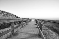 Wooden dune walkway BW Stock Photo