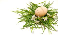 Wooden easter egg in a green grass nest Royalty Free Stock Photo