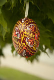 Wooden Easter egg. Hand-painted hanging on a tree Stock Images