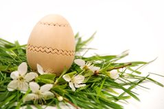 Wooden easter egg in a spring nest Royalty Free Stock Photo
