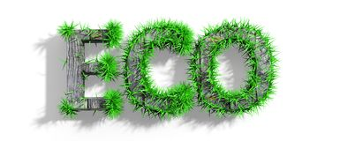 Wooden Eco word with green grass Stock Photo