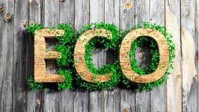 Wooden Eco word with vegetation Stock Photo