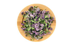 Wooden ecological plate with fresh wild marjoram medical flowers Stock Photo