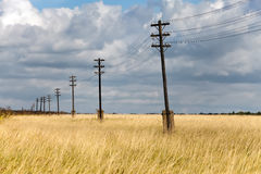Wooden electric pillar in the field Royalty Free Stock Photo