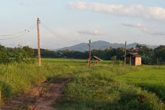Wooden electric pole. In countryside royalty free stock image