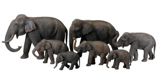 The wooden elephants antique Royalty Free Stock Photos