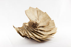 A wooden fan Royalty Free Stock Images