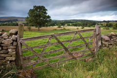 Wooden Farm Gate, England. Rustic gate in drystone wall in Cumbria, England, UK Royalty Free Stock Image