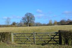 Wooden farm gates. Royalty Free Stock Image