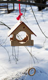 Wooden feeder for birds with a ring. Hanging on the tree on the red string Royalty Free Stock Photo
