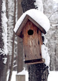 Wooden feeder for birds in winter forest. Wooden hand-made feeder for birds on a tree trunk in winter forest Stock Image