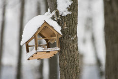 Wooden feeding Trough for birds hanging on tree in winter. Small wooden house for feeding wild birds in winter. Feeder. It regularly poured food for small birds royalty free stock image