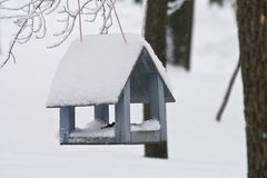 Wooden feeding Trough for birds hanging on tree in winter. Small wooden house for feeding wild birds in winter. Feeder. It regularly poured food for small birds stock photos