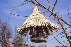 Wooden feeding trough for birds Stock Photos