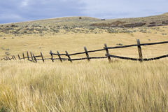 Wooden fence. A wooden fence stretching across grasslands royalty free stock images