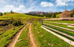 Wooden fence along the dirt road on grassy hills. Of Carpathian alps. gorgeous springtime countryside with spruce forest and mountain ridge with snowy tops in Royalty Free Stock Photos