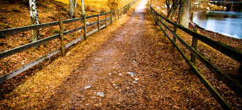 Wooden fence along a path Royalty Free Stock Images