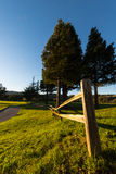 Wooden fence along a walking path with grass Stock Photos