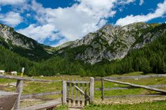 Wooden fence in alps Royalty Free Stock Photos