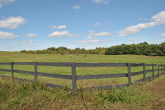 wooden fence around a horse field Royalty Free Stock Photography