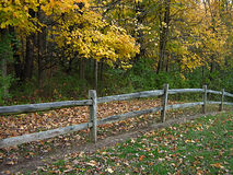 Wooden Fence In Autumn Royalty Free Stock Photos
