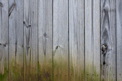 Free Wooden Fence Background Royalty Free Stock Photo - 13703425