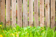 Wooden fence background. With green grass border Stock Photos