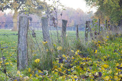A wooden fence with barbed wire Royalty Free Stock Photos